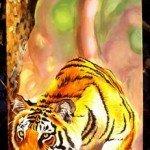 Faune dans Faune et Flore tigre2-150x150