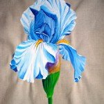 iris-blue-am-150x150 anouk