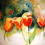 tulipes-mary-lou-150x150 dans Aquarelle